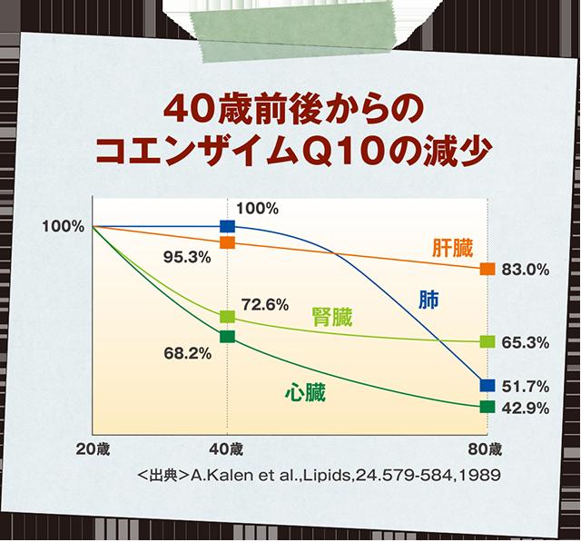 40歳前後からのコエンザイムQ10の減少