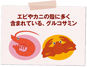 エビやカニの殻に多く含まれている、グルコサミン