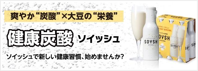 ソイッシュ 100ml【定期お届け便】